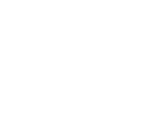 Smart Testsolutions